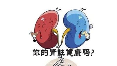关爱肾健康 正确防治尿毒症